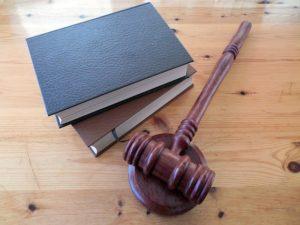 स्वतंत्र न्यायपालिका, मौलिक अधिकारों का सम्मान और संरक्षण, कानून के शासन की दो सबसे महत्वपूर्ण विशेषताएं हैं : एस. रविंदर भट