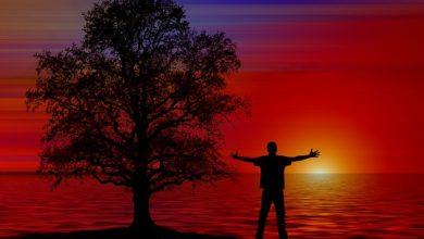 Photo of Accept the Reality & enjoy a stress-free life