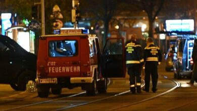 Photo of NEWS for Peace: Gulf countries condemn extremist attacks in Vienna