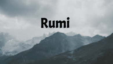 Photo of The Peacemaker Rumi